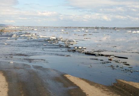 В Южно-Казахстанской области 17 февраля ожидаются паводки