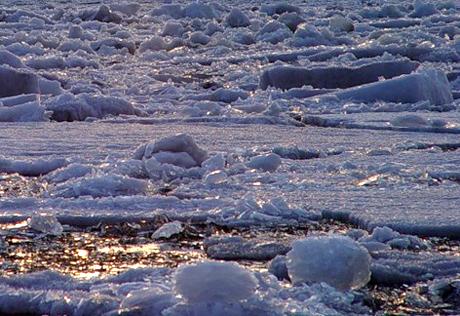 На реках Южного Казахстана ожидаются паводки