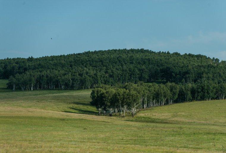 Близость к курорту Боровое придает этому поселку особый статус. Первое желание приезжего городского жителя - остаться здесь навсегда.