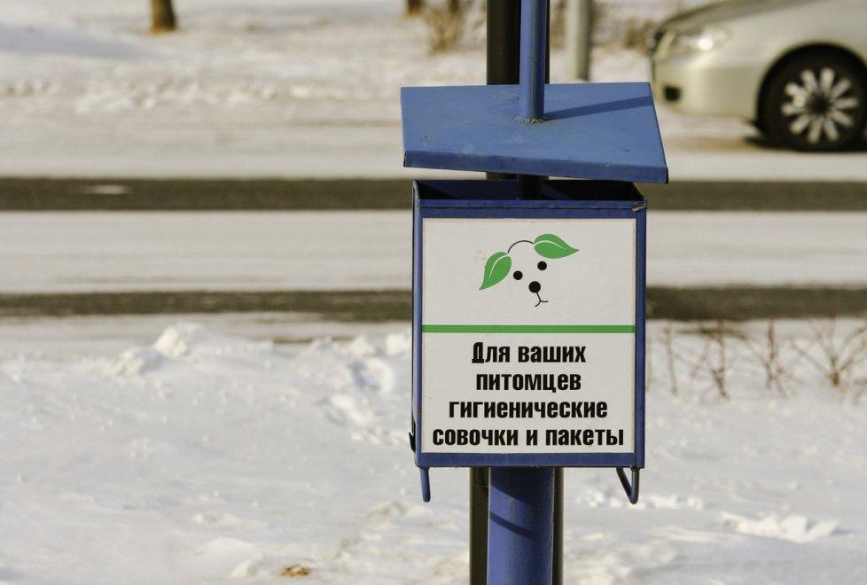 <p>По всей видимости, таким образом в городе пытаются привить культуру правильного выгула собак.</p>