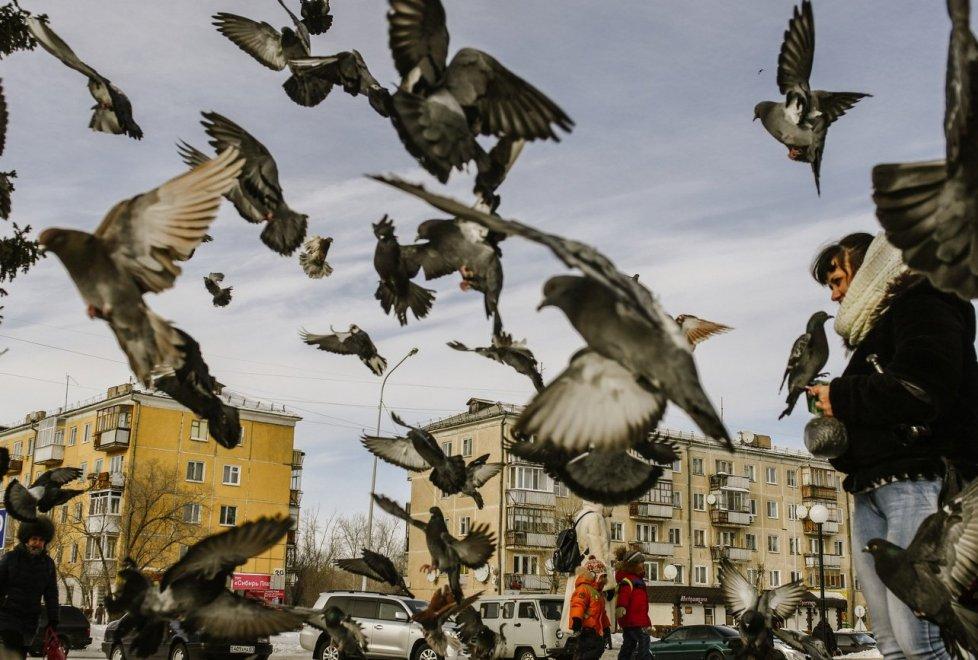 Фото Турар Казангапов©