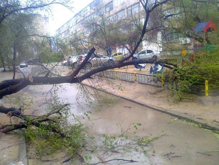 Более 60 улиц Мангистауской области оказались в зоне подтопления из-за сильного ливня, фото-1
