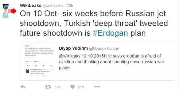 Еще в октябре атаку на российские самолеты готовил Эрдоган – WikiLeaks
