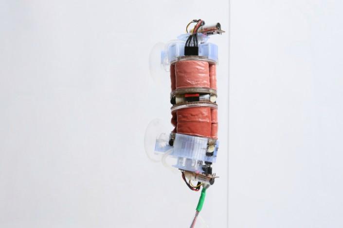"""В Швейцарии разработали """"робота-червяка"""" для помощи в домашних делах"""