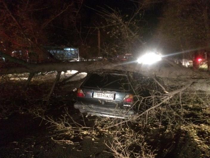 Комитет поЧС: Три человека пострадали в итоге урагана вТаразе