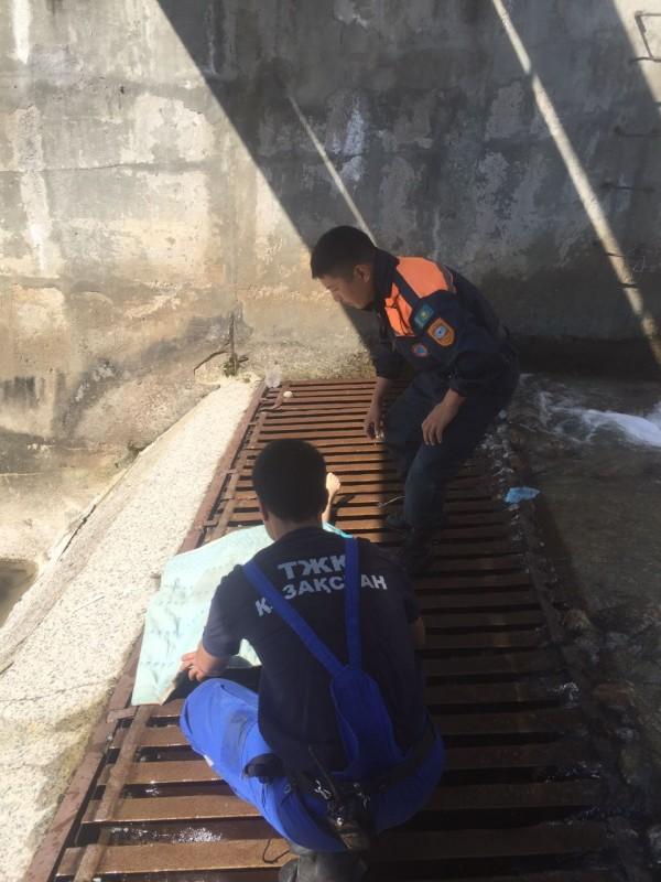 Шестилетняя девочка утонула в реке Малая Алматинка
