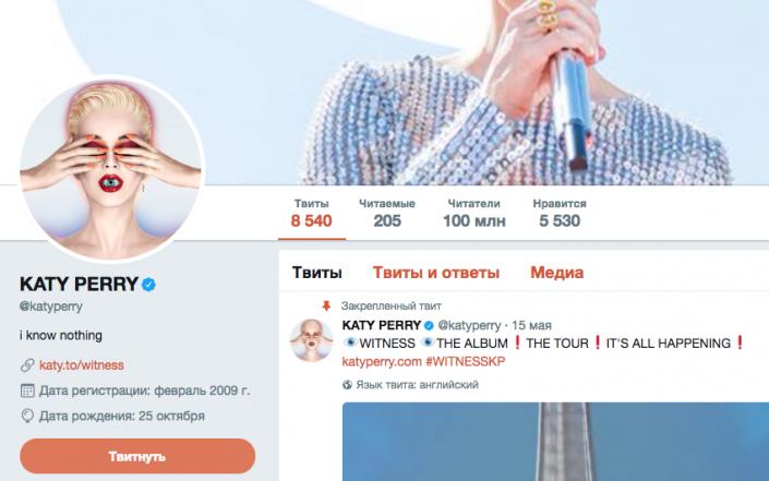 Кэти Перри стала рекордсменкой в социальная сеть Twitter