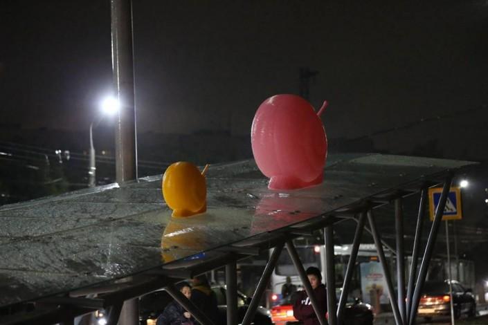 Гигантские улитки появились на улицах Алматы
