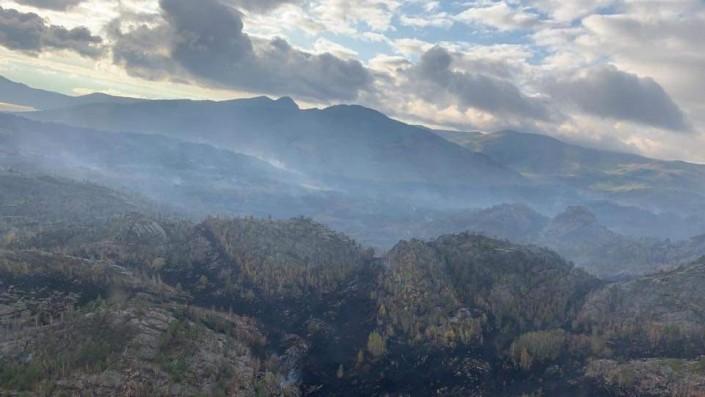 В тушении пожара в Баянауле принимает участие 500 человек