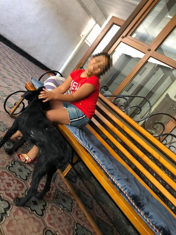 Сотрудник службы отлова застрелил собаку на глазах у маленькой хозяйки в Таразе