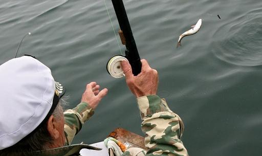 В Алматинской области вступил в силу запрет на рыбалку - новости ...