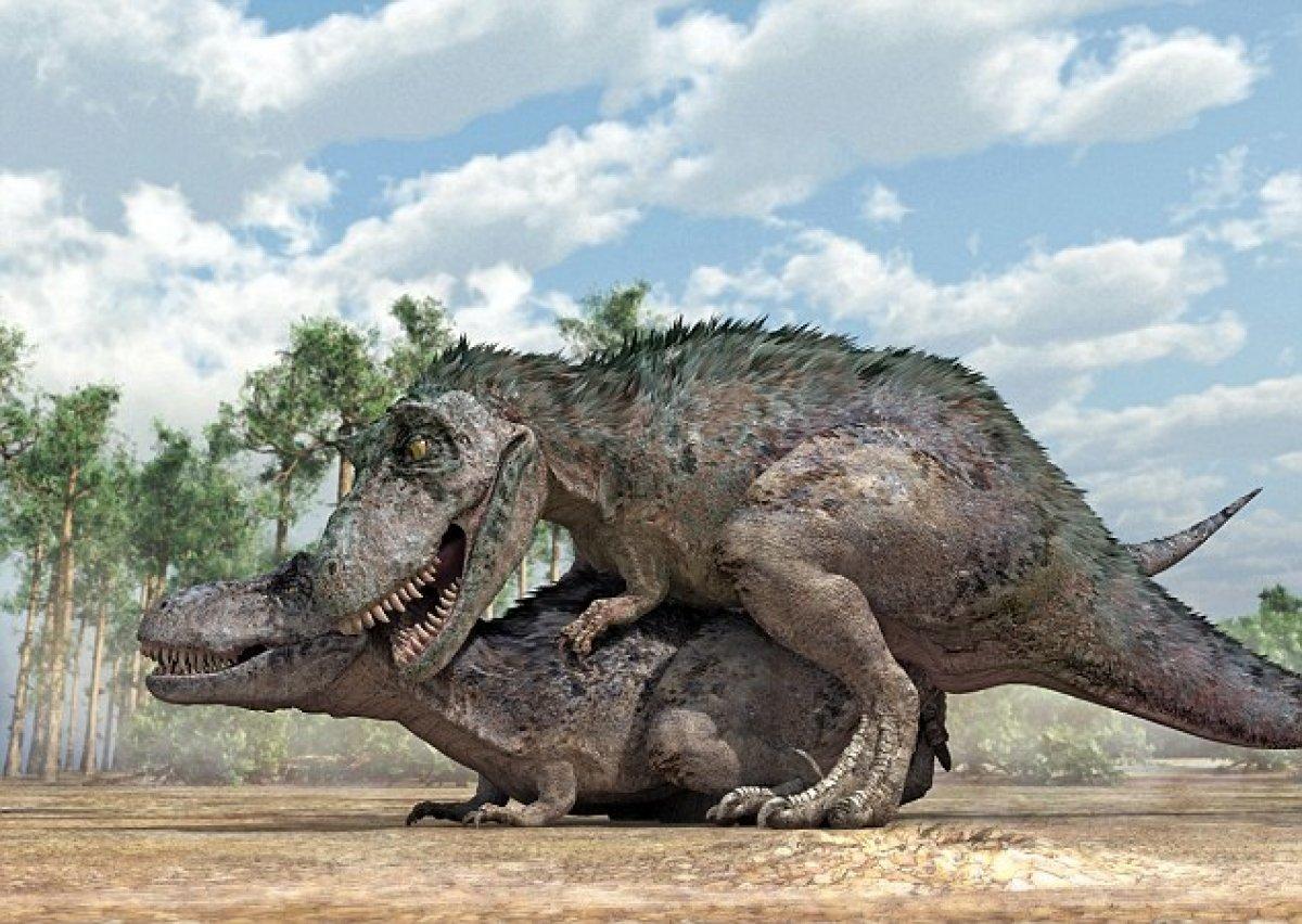 Dinosaur mating human porn pics sexual toons