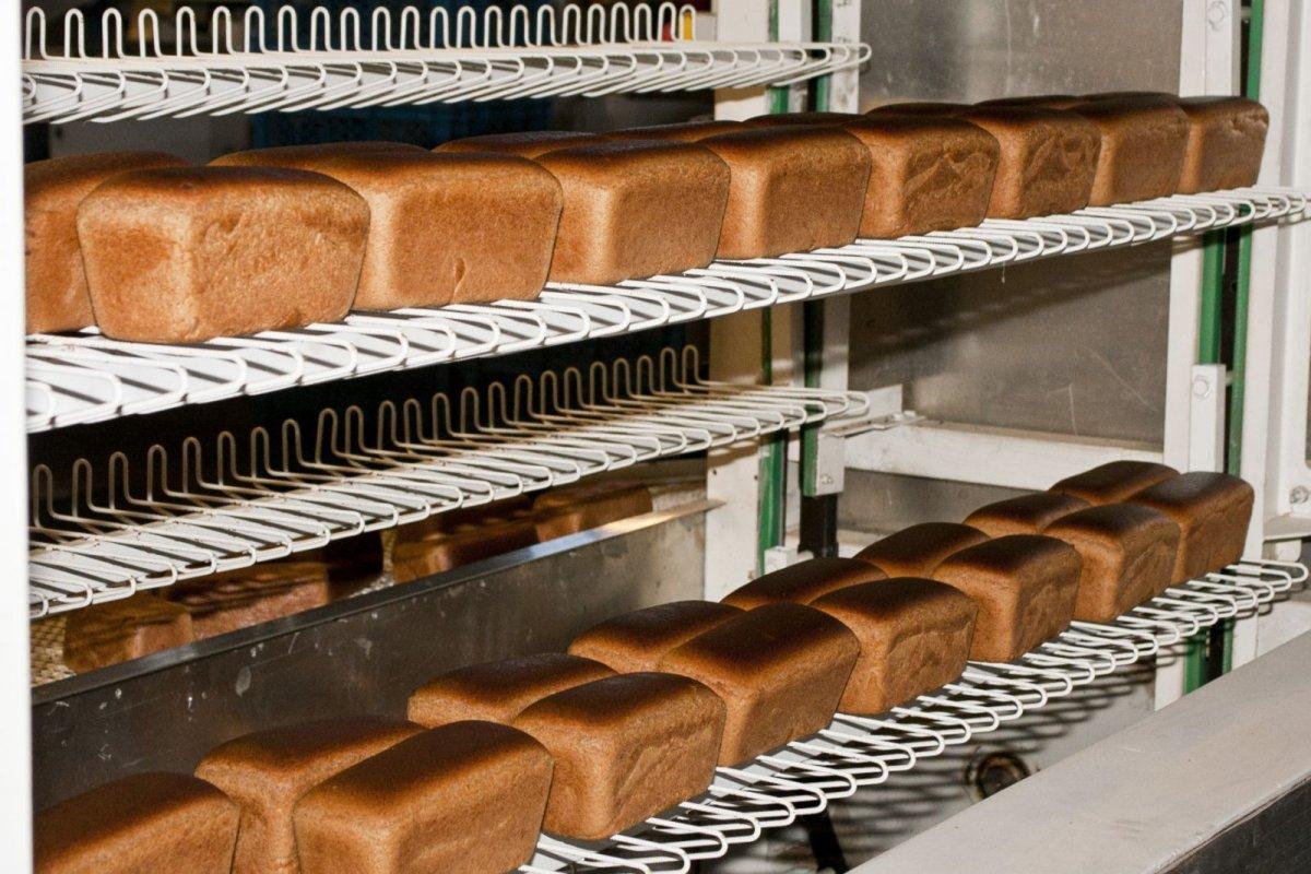 белье хорошо замороженный чёрный хлеб технология сохранения необходимо помнить:Белье