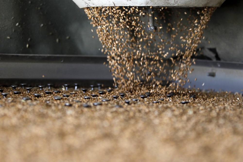 Китай планирует импортировать российское зерно
