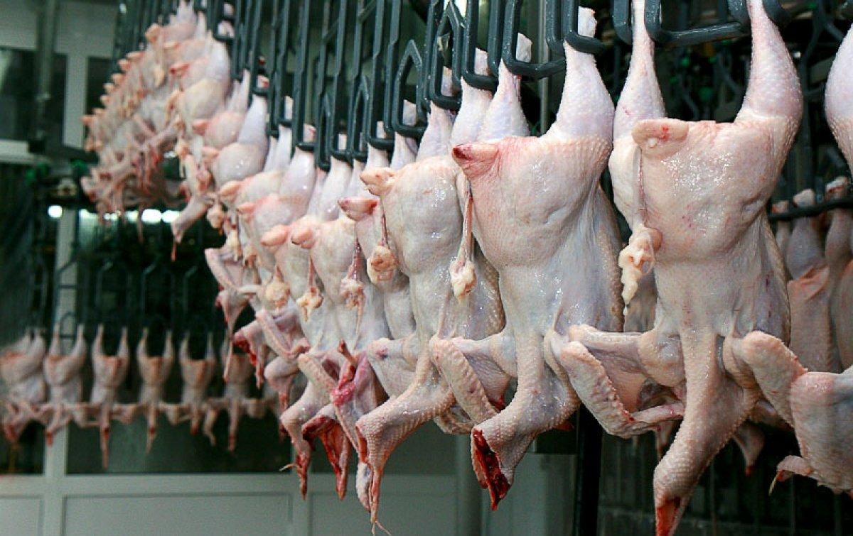 Сонник толкование курица маринованая