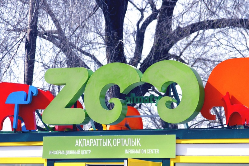 Зоопарк Алматы. ©Айжан Тугельбаева
