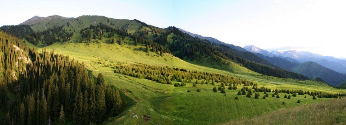 природа казахстана фото и картинки жайлау миллиардеры: