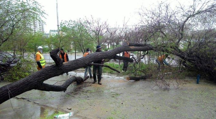 Более 60 улиц Мангистауской области оказались в зоне подтопления из-за силь ...