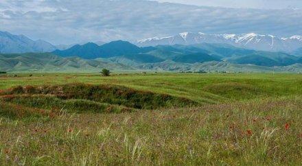Публичная карта земель страны будет доступна для каждого казахстанца