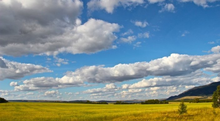 Законопроект, приостанавливающий продажу и аренду земель, одобрили в Мажили ...