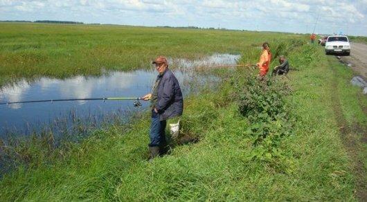 В Костанайской области ловят рыбу в дорожных кюветах