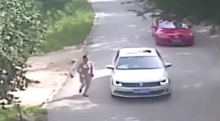 Видео смертельного нападения тигра на посетительницу китайского парка опубликовали СМИ