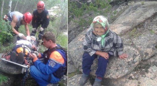В горах Каркаралинска чудом удалось спасти 80-летнюю грибницу