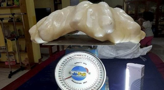Рыбак нашел 34-килограммовую жемчужину и 10 лет хранил ее под кроватью