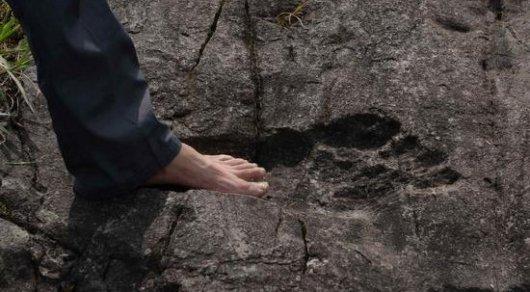 Наюго-западе Китая отыскали огромные окаменелые следы ног