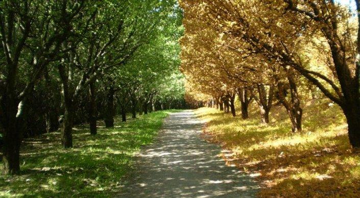В Казахстане ожидается теплая осенняя погода