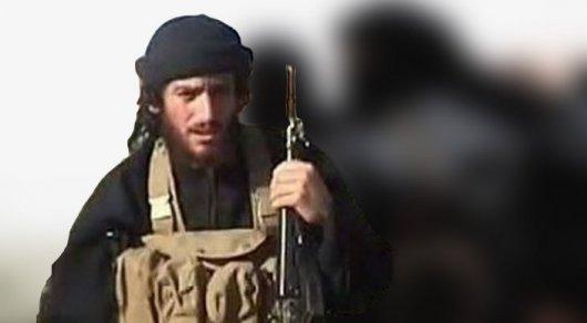 Пентагон подтвердил ликвидацию главаря ИГИЛ Абу аль-Аднани