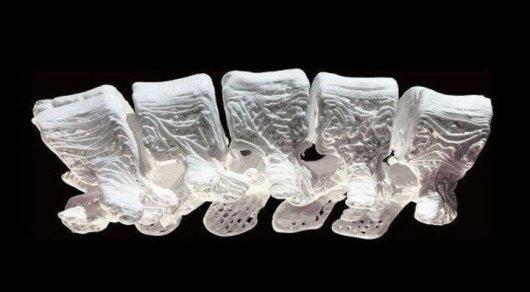 На3D-принтере напечатали искусственные кости