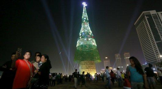 НаШри-Ланке установили самую высокую вмире новогоднюю ель