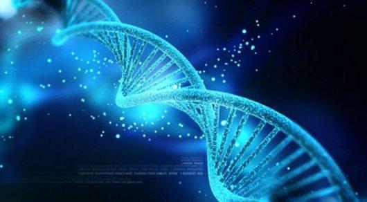 Люди станут бессмертными— ученые представили сенсационное лекарство отстарости