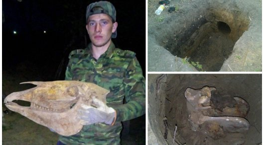 Автор необычной находки в селе на севере Казахстана сделал новое открытие