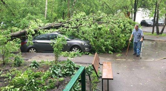 В российской столице жертвами урагана стали 13 человек