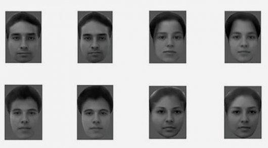 Работу мозга обезьян превратили в человеческие лица