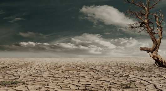 Ученые: аномальная летняя жара затронет 74 процента населения Земли к 2100 году
