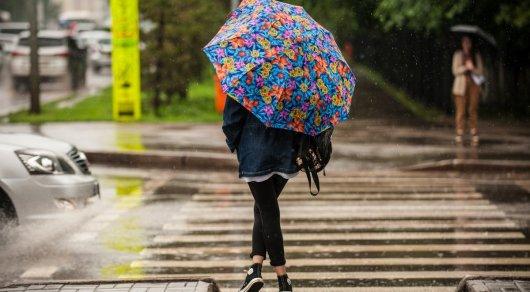 Дождь нам помог - замминстра МВД о пожароопасной обстановке в Астане
