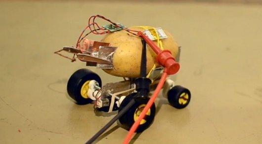 Самоуправляемого робота из картофелины собрал польский инженер