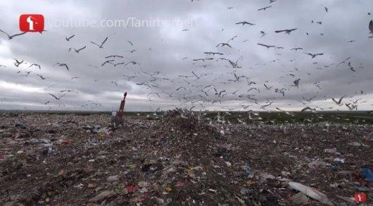 Представители мусорного полигона в Астане ответили Танирбергену Бердонгару