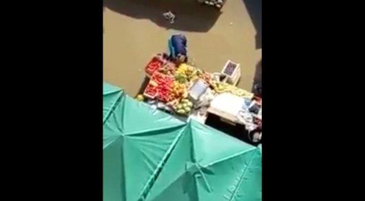 Моющий овощи в луже продавец в Астане попал на видео