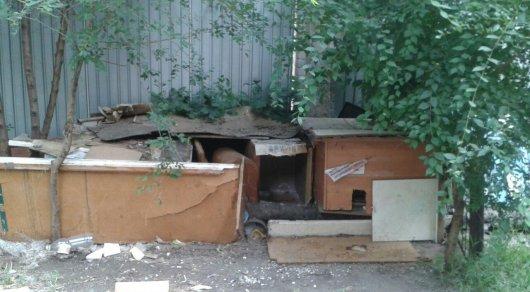 Жители Костаная строят домики для кошек из старых дверей