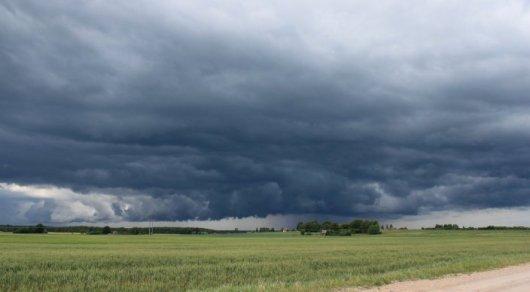 Жителей Алматинской и Жамбылской областей предупредили о сильном ветре