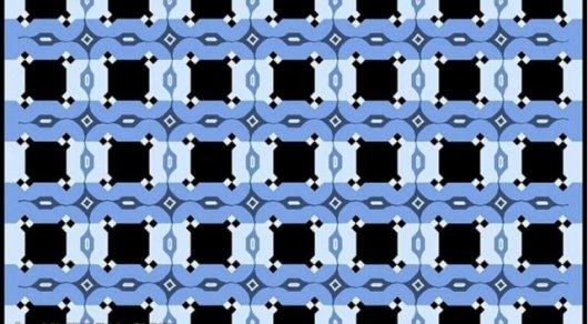 В Сети набирает популярность оптическая иллюзия с