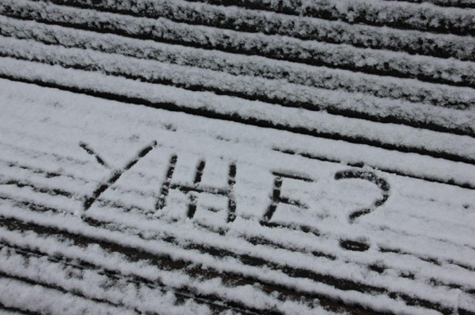 С первым снегом картинки прикольные с надписями
