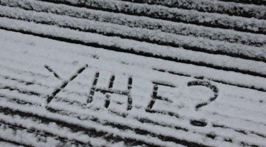 В России выпал летний снег