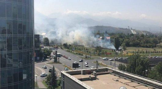 Алматинцев встревожил дым на Аль-Фараби - Фурманова: загорелась сухая трава
