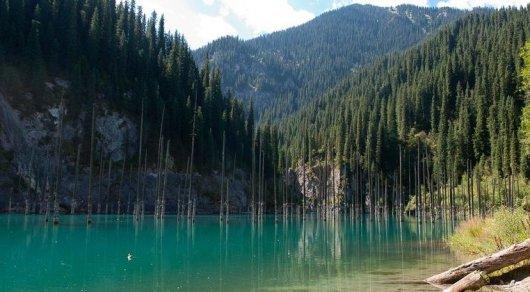 Езда на внедорожниках по озеру Каинды возмутила алматинца