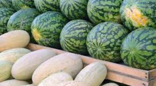 В акимате Астаны ответили, будут ли бесплатно раздавать дыни и арбузы в Дни ЮКО